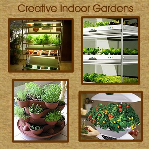 Indoor vegetable garden design ideas