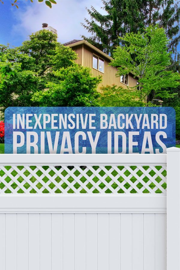 7 Backyard Privacy Ideas To Keep Nosy Neighbors Out Without A