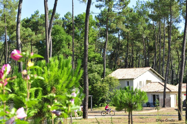 Le parc des demeures du Lac pour votre séjour à Casteljaloux, dans le Lot et Garonne.