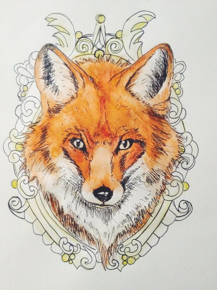 753 best art dessin animalier images on pinterest animal illustrations bird and bird boxes - Dessin renard ...