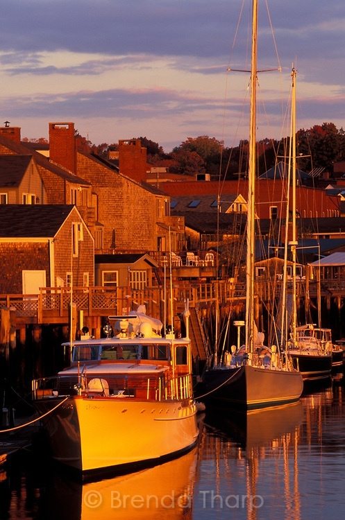 Dawn light strikes boats in Camden Harbor, Maine. Photo: Brenda Tharp.