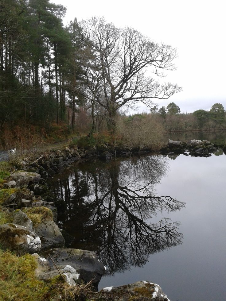 Winter on Lough Macnean