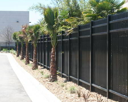 Landscaping Around Black Iron Fence Around The Pool Maybe