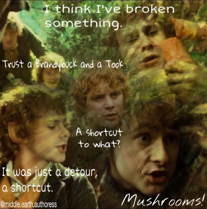 Hobbits~ This is one of the best scenes with the Hobbits!!: