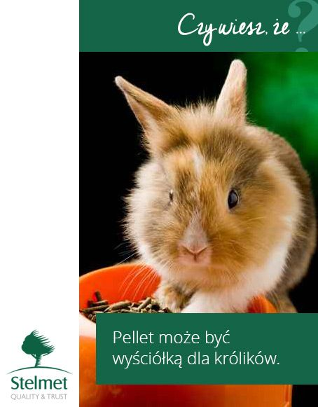 Pellet może być wyściółką dla królików.