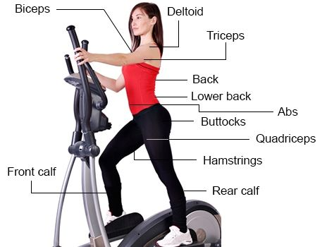 Elliptical Machines Iѕ Whеrе It's At!  - http://treadmilldoctor1.com/elliptical-machines-i%d1%95-wh%d0%b5r%d0%b5-its-at/