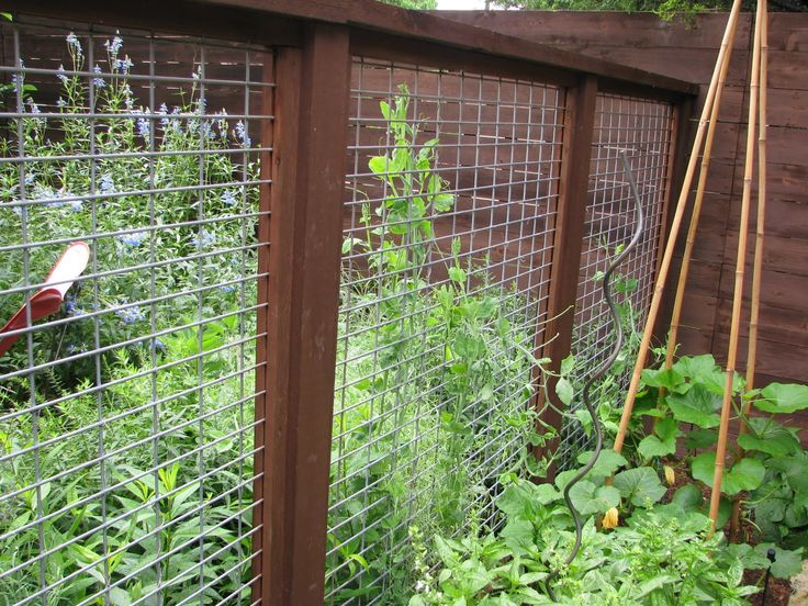 Best Vegetable Garden Fence Ideas Images On Pinterest Veggie