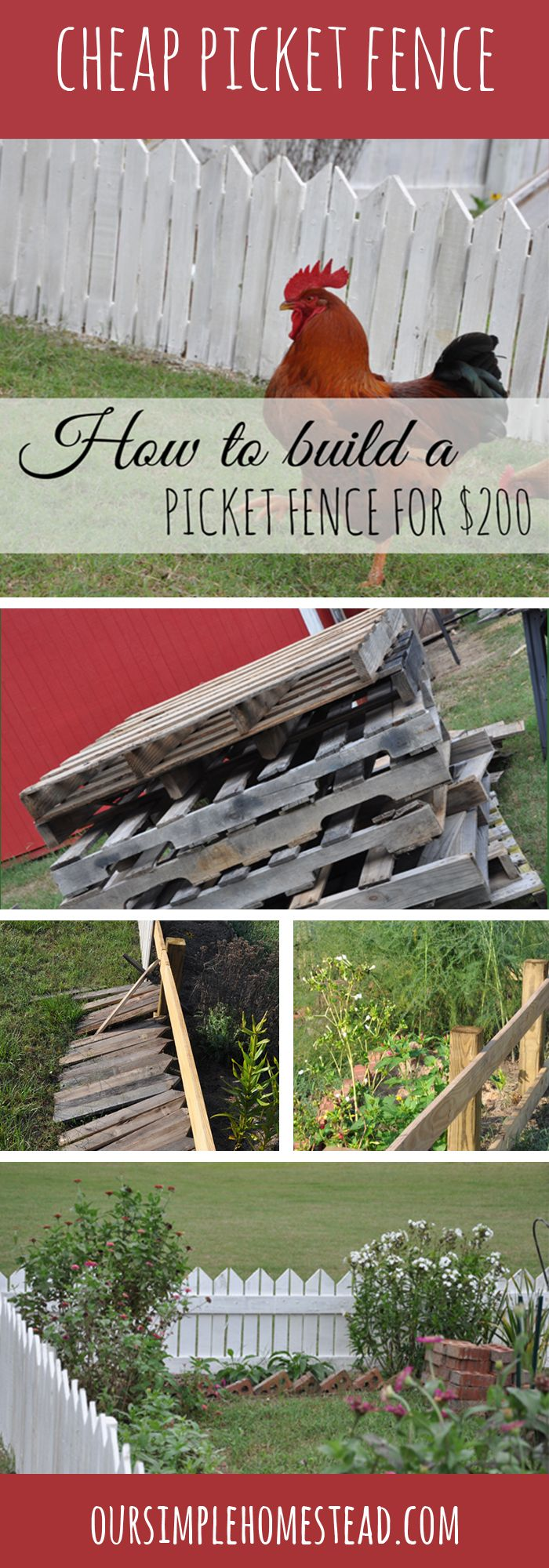 How to Build a Cheap Picket Fence for $200 - This month's project was to build a cheap wood picket fence around the kitchen garden. We hope to keep the chickens from using it as their personal space, plus add a pretty visual to my favorite garden.