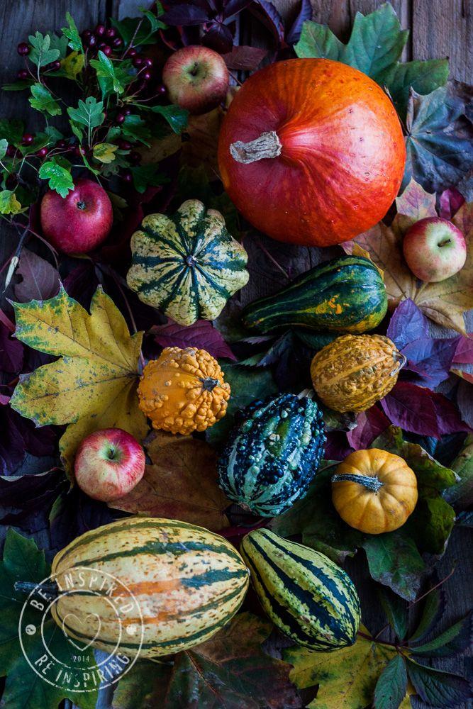 autumn colours, autumn, pumpkin, autumn food, jesień, kolory jesieni, dynia