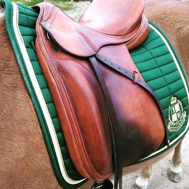 Dressage saddle blanket Belfiore from JH Collection. #HookedOnHööks I www.hookseurope.com I elfii89