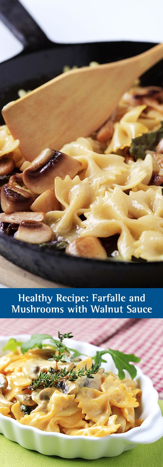 Healthy Vegetarian Recipe: Farfalle and Mushrooms with a Walnut Sauce. A creamy pasta recipe that you won't regret eating. Walnut sauce works as a healthy alternative to traditional pasta sauce. Top this healthy dish off with a sprinkle of Parmesan cheese.