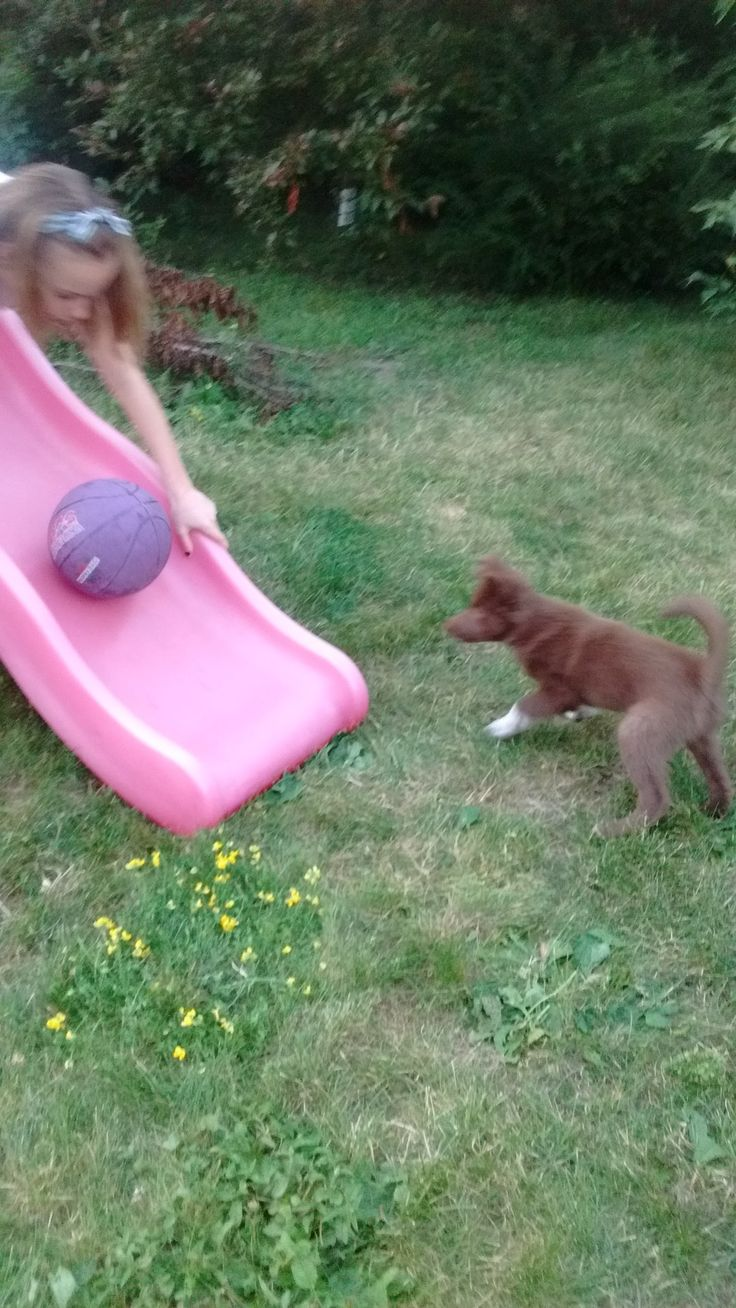 Two favourite outdoor toys:  the purple ball and the slide!