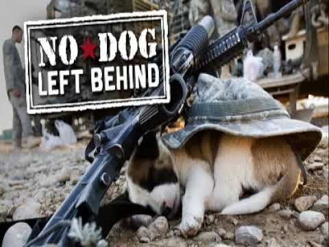 No Dog Left Behind - our military servicemen who bonded with animals in the war zone and the SPCA International program that helped them rescue and reunite with their buddies at home in the U.S