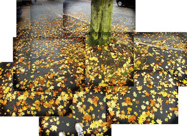 David Hockney's Photography | David Hockney Photography Joiners