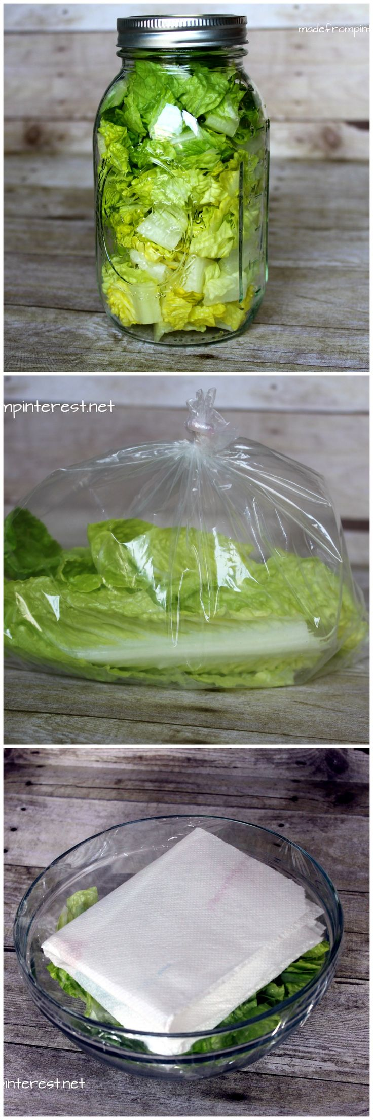How to store lettuce so it will last longer, no more brown wilted lettuce in the fridge!