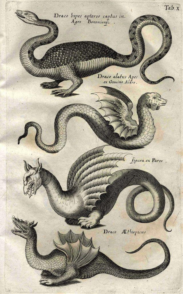 Historiae Naturalis De Serpentibus (libri duo)