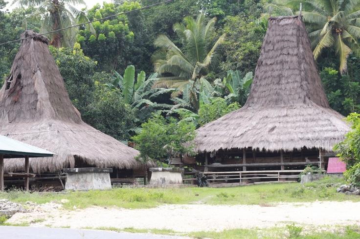 Sumbanese traditional house. Wanokaka district, West Sumba, East Nusa Tenggara, Indonesia.