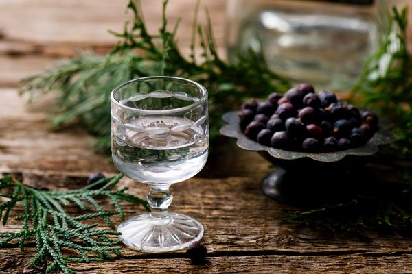 In my opinion, gin is one of the most underrated spirits. Here are 10 things you probably did not know about gin and its origin.