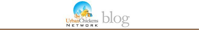 Update on Greensboro, NC urban chicken ordinance  And in more Carolina chooks news: