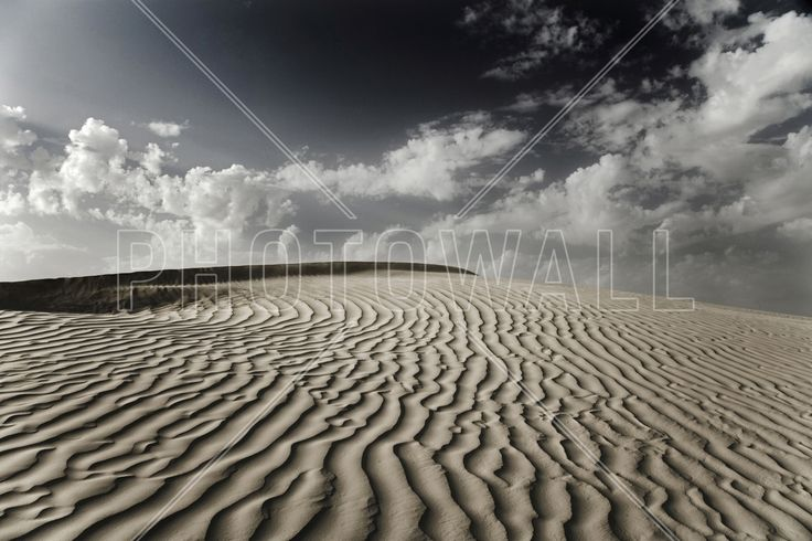 Desert Dune Sahara - Wall Mural & Photo Wallpaper - Photowall