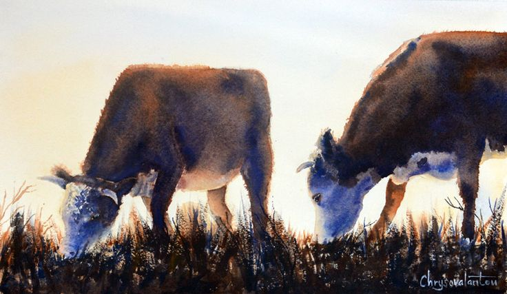 Cows grazing in field at sunrise watercolor painting
