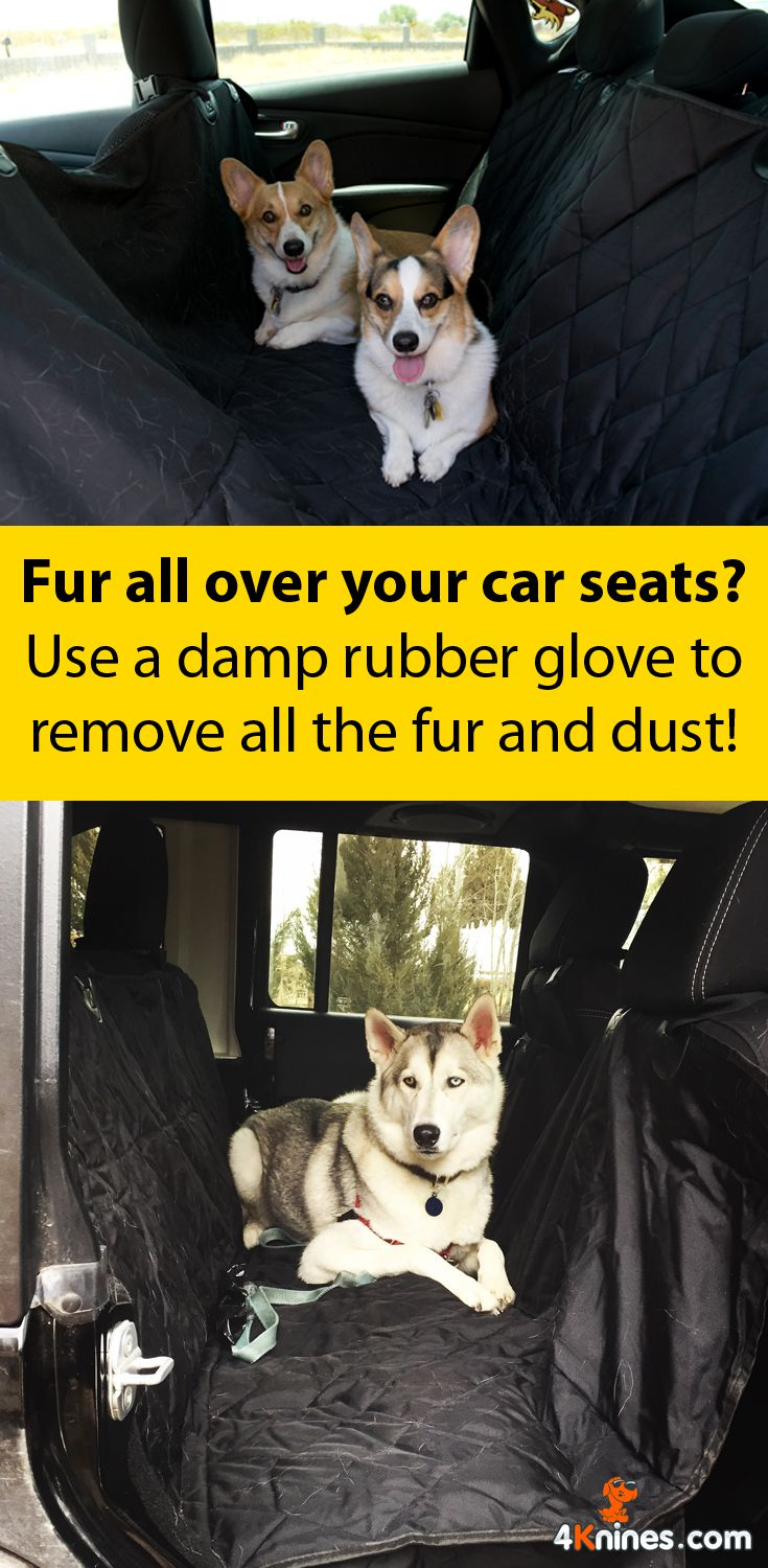 Just moisten a rubber glove, then swipe it across the seats. The rubber will attract fur like a magnet! To prevent future messes, try the premium car seat cover from 4Knines: https://4knines.com/collections/all/products/dog-seat-cover-rear-bench-seat-for-cars-trucks-and-suvs-grey-regular
