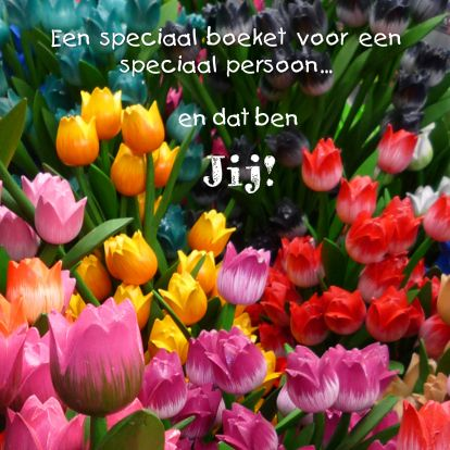https://www.kaartje2go.nl/kaarten/speciale-bloemen-voor-speciaal-persoon/img/speciale-bloemen-voor-speciaal-persoon.jpg