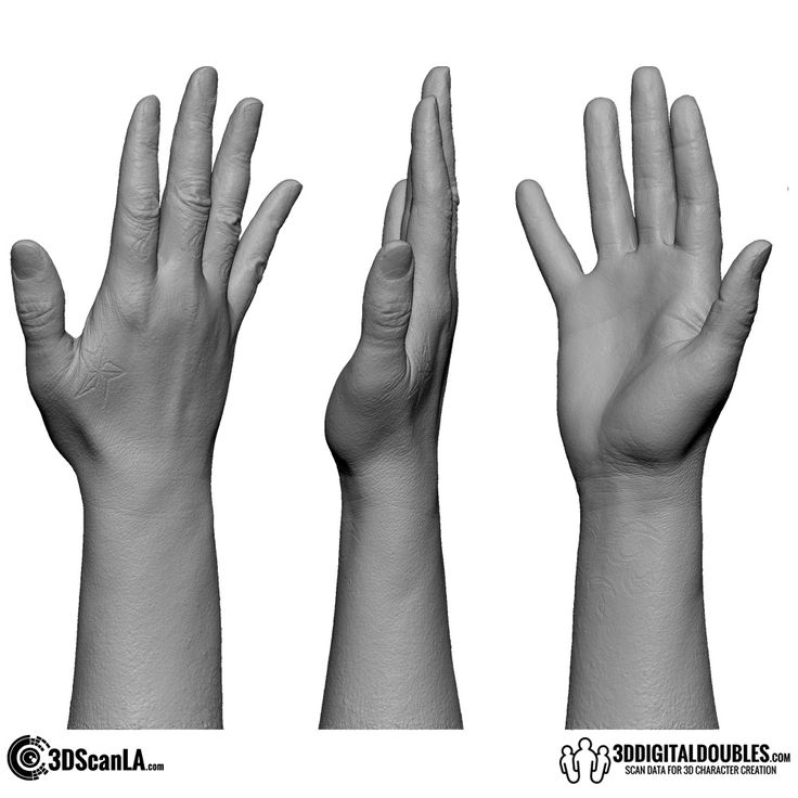 3D Head and Body Scanning for 3D Character Design | 3D Hand Scan 01-03