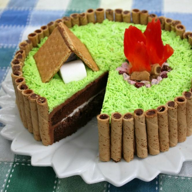 25+ Best Ideas About Camping Cakes On Pinterest