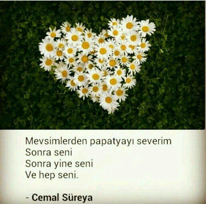 SeNi SeNi SeNi..... ❤❤❤❤❤