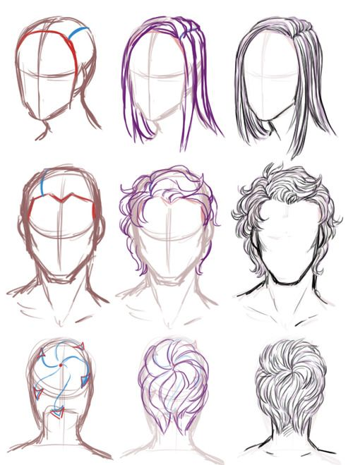 Hair tips including the back of the head