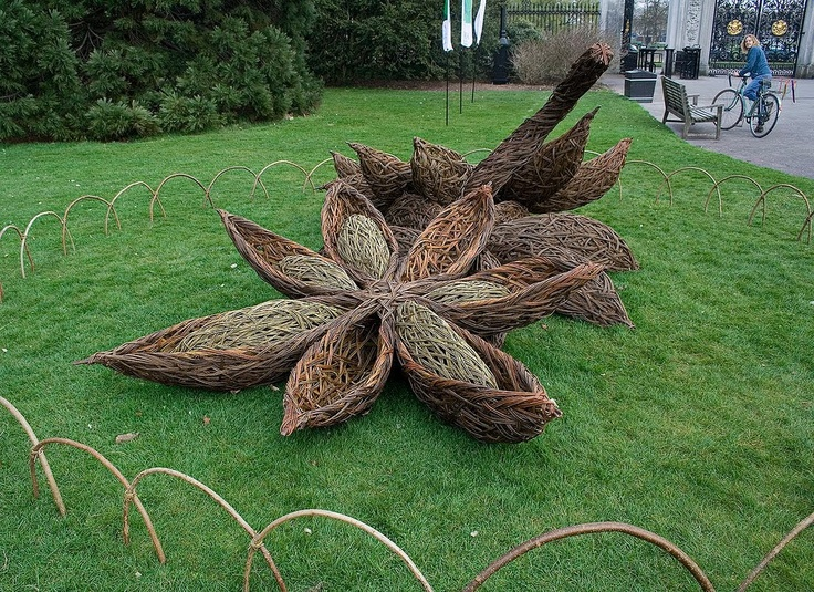 Willow seed pod make ginormous seed pods as yard ...