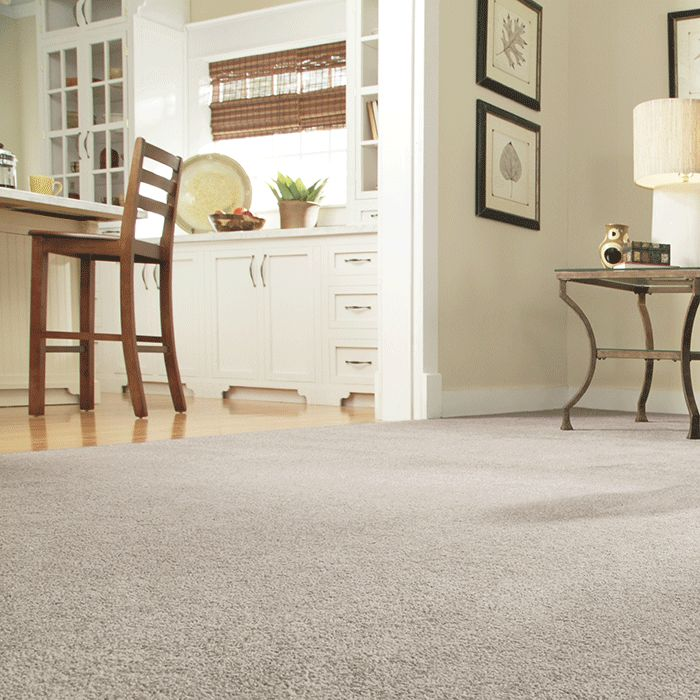 The 25 Best Carpet Types Ideas On Pinterest Types Of Carpet Home Carpet And How To Shampoo