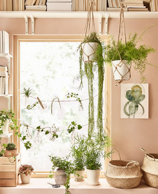 Indoor plant decor in a living room can purify air, generate oxygen and put you at ease. IKEA has lots of plant pots to choose from like MUSKOT plant pot in white earthenware. Why not frame a window with plants above, below and across?