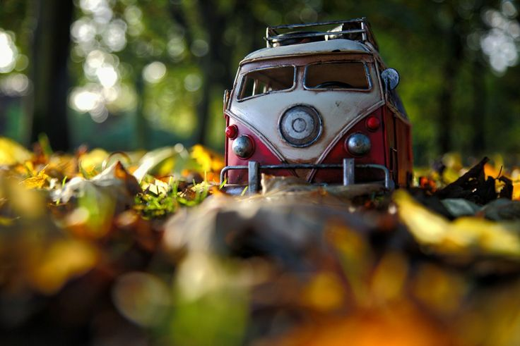 Autumn Leaves by Kim Leuenberger on 500px