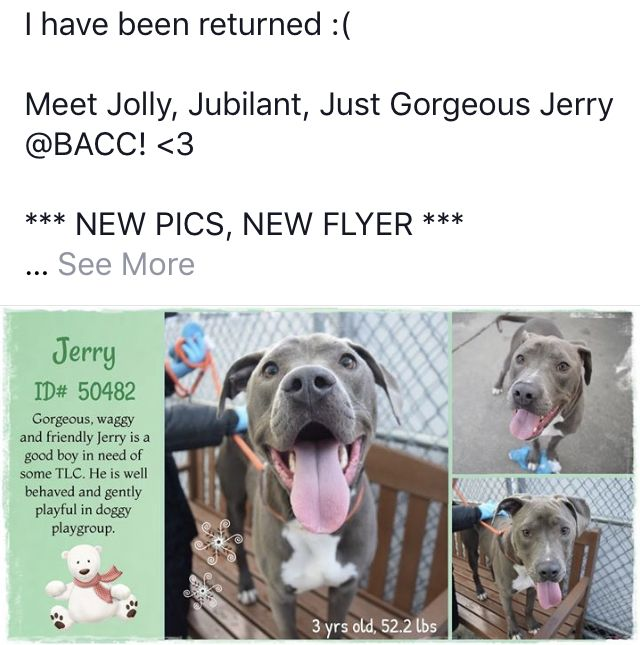 Jerry Murdered 01 11 19 To Die 01 11 19 Returned Needs