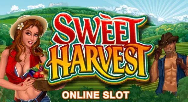 Sweet Harvest Slot Multiplayer Tournament is a 5-reel, 20-payline video slot featuring a light and comical farming theme with sweet features including re-triggered free spins, multipliers, wilds and a reel hold feature.