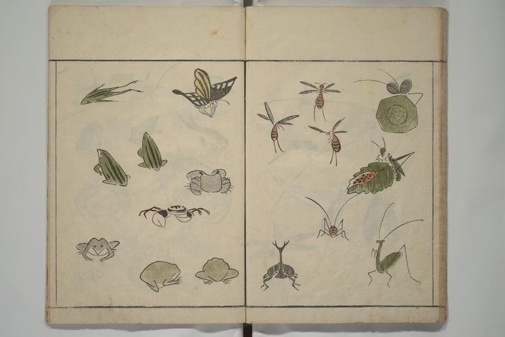 Kuwagata Keisai | How to Draw Birds, Insects and Fish Simply (Chōjū…