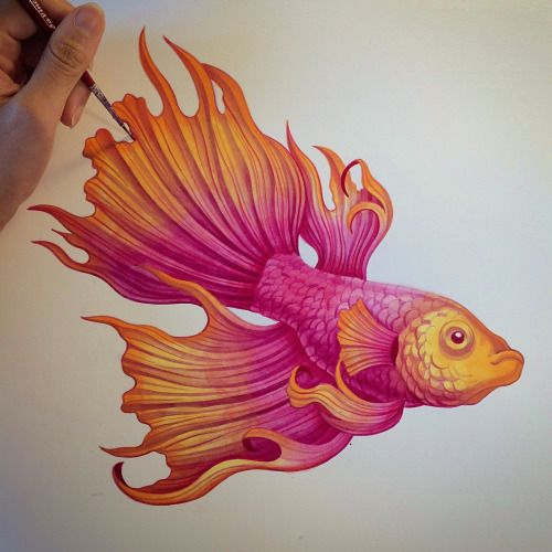 10 best images about art sanjana baijath on pinterest for Easy fish painting
