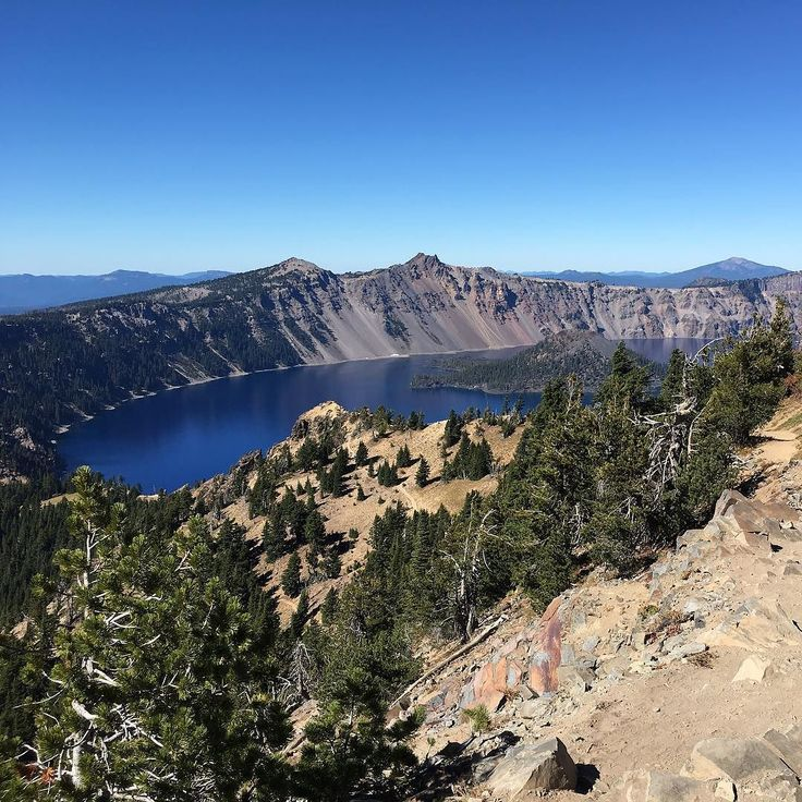 If there are mermaids in eastern Oregon they live in the pristine waters of crater lake. It's filled with only rain and snow melt no minerals from streams and has underwater visibility up to 144 feet. #cobaltblue #volcano #roadtrip #craterlake