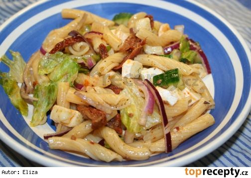 Půl balíčku oblíbených těstovin (tedy 250g),8 - 10 sušených rajčat ze skla,1 hermelín,ledový salát,půlka červené cibule (nemusí být)1/3 salátové okurky, když je malá, tak půlka sůl, pepř-Uvařené těstoviny slejeme a ochladíme studenou vodou. Přendáme do mísy, ze které budeme podávat hotový salát.Přidáme natrhaný salát na kousky, sušená rajčata a cibuli  pokrájíme na proužky,salátovou okurku nakrájíme na kostičky  stejně tak, jako hermelín. Do salátu přidáme 2 lžíce oleje  z rajčat, sůl,pepř