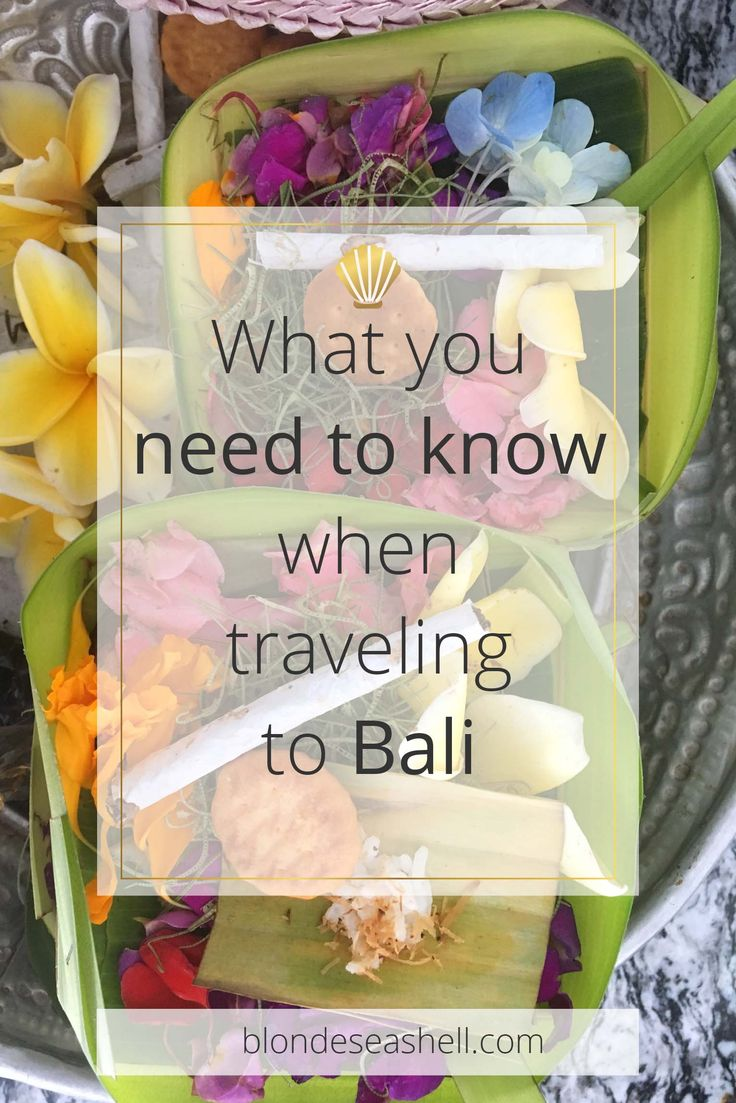 12 useful things you need to know when traveling to Bali