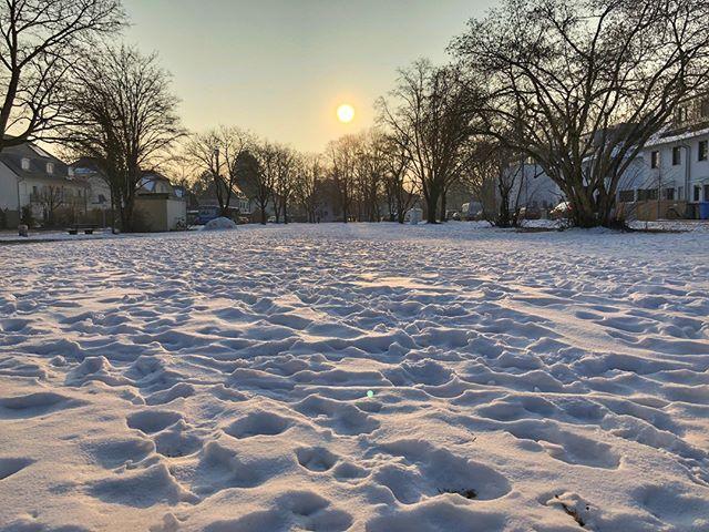 Gestern war meteorologischer #Frühlingsbeginn am Wochenende sollen auch die Temperaturen wieder steigen. Eigentlich schon ein bisschen schade ich mag so einen schönen Wintermorgen...  #trudering  #münchen #muenchen #instamunich #munich #bavaria #bayern #munichcity #089 #minga #mingaoida #muc #deinbayern #münchenliebe #igersmunich #germany #cold #snow #deutschland #travelblog #traveltheworld #neverstopexploring #photooftheday