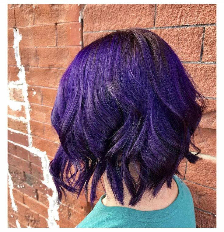 #purplehair #bob #darkpurple #curlybob