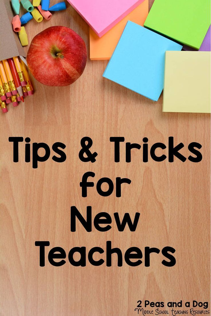 A collection of teaching resources and ideas to support new teachers in their first five years. Topics include: finding a teaching job, establishing effective routines, classroom management, classroom organization, managing the paperwork load, classroom set-up, first week activities and best practices in teaching.