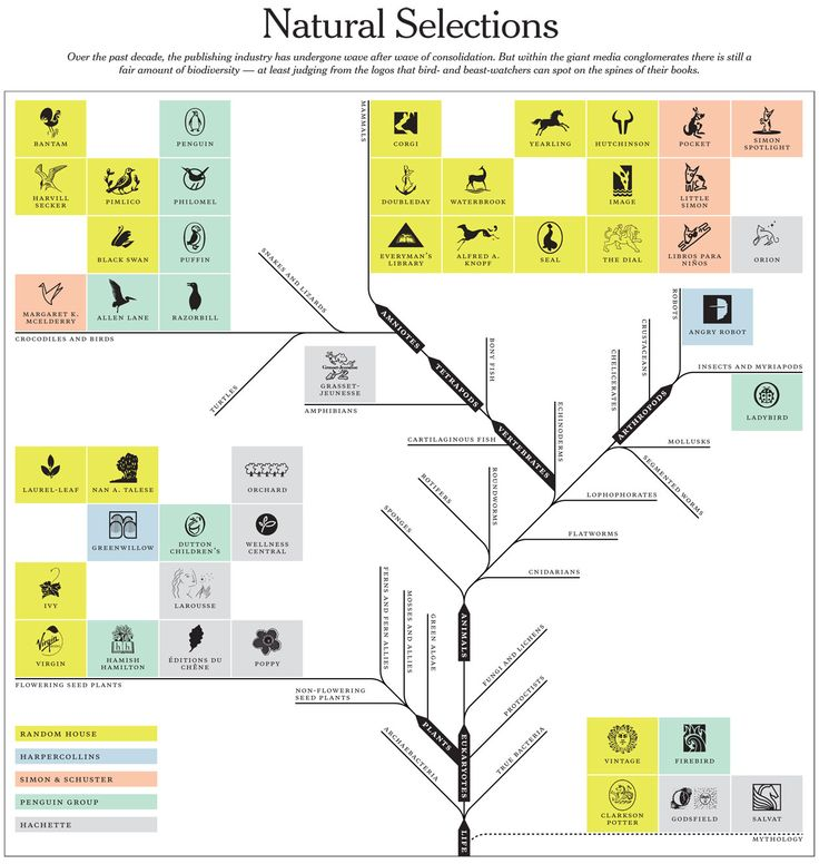 43 best information retrieval images on pinterest bookshelf ideas natural selections consolidation logo biodiversity in the publishing industry fandeluxe Image collections