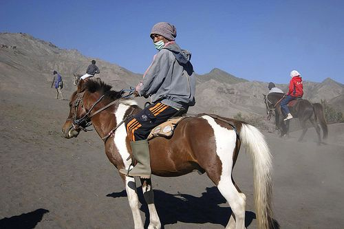 Riding a #horse at Bromo Tengger Semeru National Park, East of Java - #Indonesia