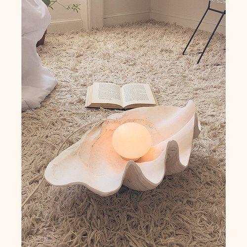 // Wary Meyers shell lamp