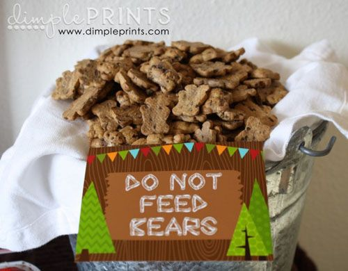 woodland creature camping great outdoors themed first birthday party by dimple prints chocolate graham cracker bears do not feed bears sign