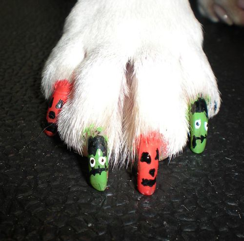 Nail Polish Pens For Dogs To Bend Light